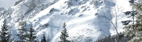 Zimowisko 2015