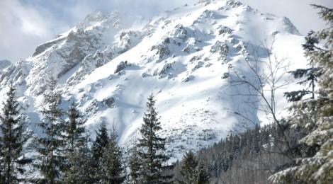 Zimowisko 2014 - karty kwalifikacyjne i lista zaliczek